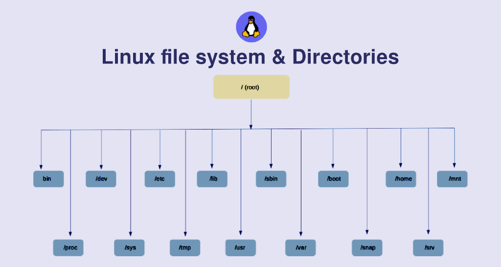 10 Important Directories Every New Linux User Should Know
