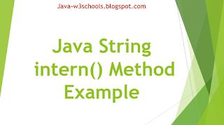 Java String intern() Method Example