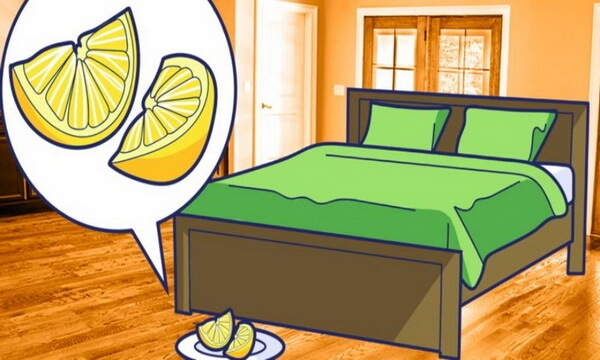 Reasons Why You Should Place A Slice Of Lemon Every Night Next To Our Bed