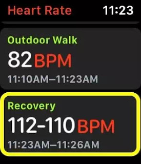 Cara Memeriksa Pemulihan Detak Jantung di Apple Watch dan iPhone-2