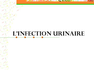 L'INFECTION URINAIRE