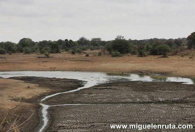 Nsemani-Dam-Satara,Kruger