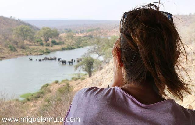 Safari-por-libre-en-Kruger-Shukuza-elefantes-río