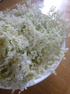 Picture of a bowl of elderflowers
