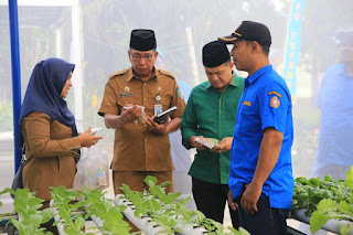 Usai Musrenbang, Zahir Tinjau Green House Hidroponik Desa Mangkai Baru