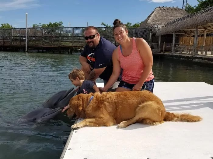 A Golden Retriever And A Dolphin Are Celebrating 8 Years Of Friendship That Blossomed After Meeting In Florida