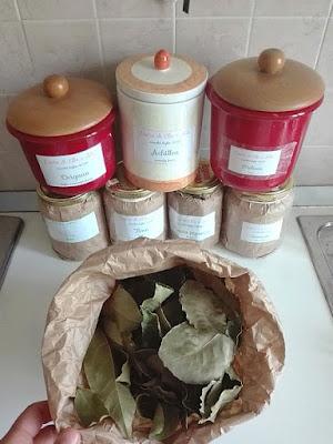 Come essiccare le erbe aromatiche in casa