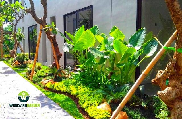 Jasa Tukang Taman Mojokerto - Jasa Pembuatan Taman Di Mojokerto