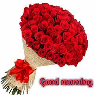 lovely good morning images hd