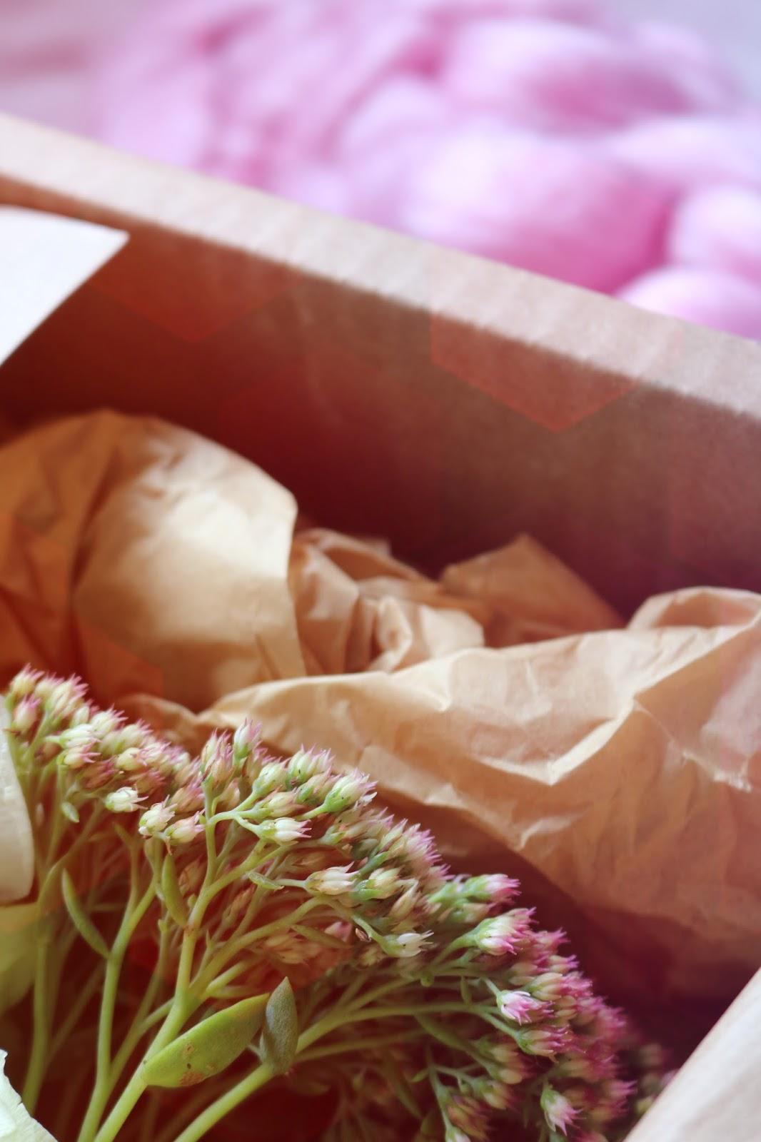 Gift Idea: Freddie's Flowers