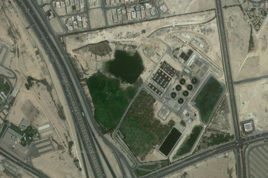 Birds of Saudi Arabia: Saudi Aramco Sewage Treatment Plant