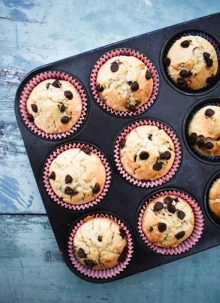 Chocolate chip muffins in a muffin tin