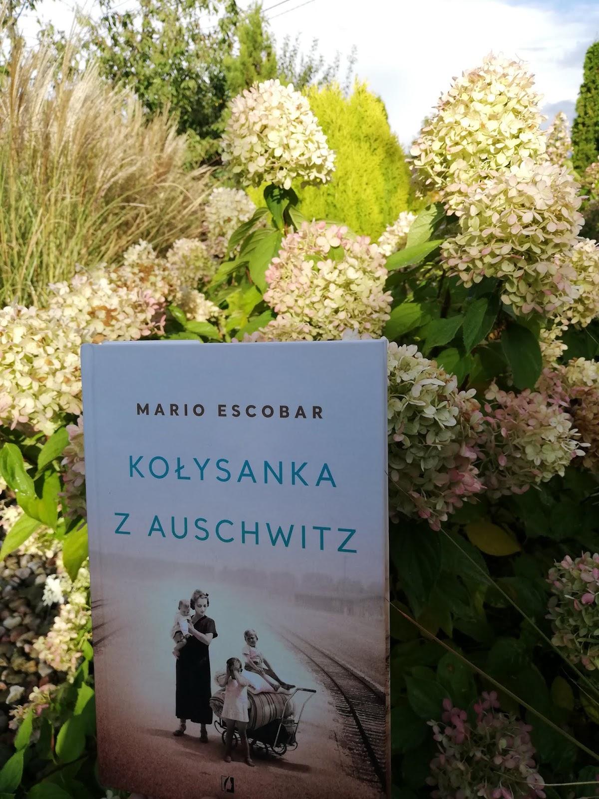 RECENZJE KSIĄŻEK: Kołysanka z Auschwitz - M. Escobar #7