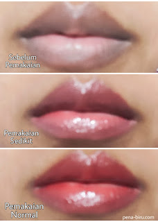 Review BLP Lip Glaze Cranberry Cobbler