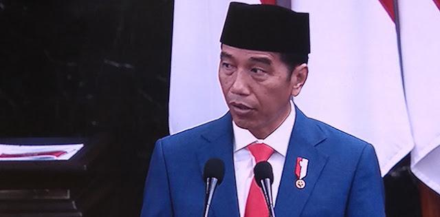 Singgung Pembuatan Kebijakan, Jokowi Apresiasi Sinergitas Eksekutif Dan Legislatif