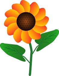 bunga matahari kartun
