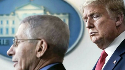 The White House targets Fauci because it disagrees with Trump over the virus