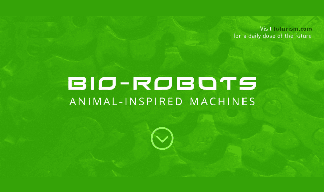 Bio Robots: Animal Inspired Machines