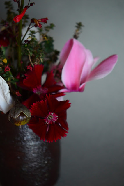 small sunny garden, desert garden, amy myers, monday vase meme, cyclamen, flower arrangement