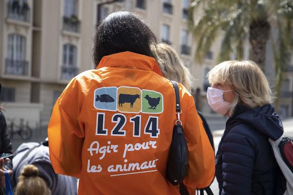 Lobbying, industrie : l'association L214 se fait financer par des entrepreneurs américains