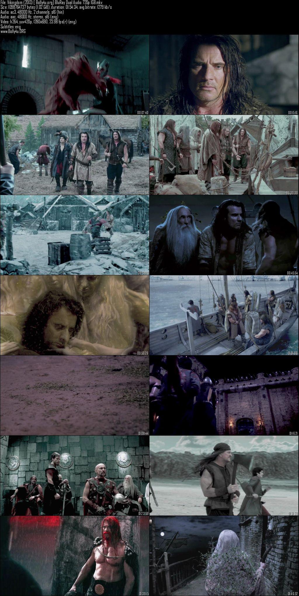 Vikingdom 2013 BluRay 400MB Hindi Dual Audio 480p Download
