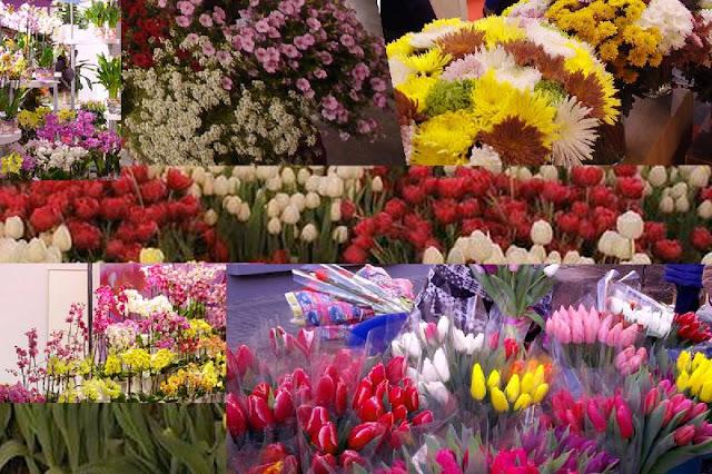 Ставрополь купить цветы