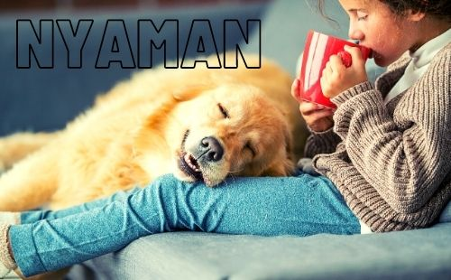 Nyaman Lyrics Andmesh Kamaleng