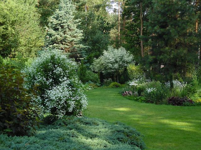 trawnik i rabaty bylinowe