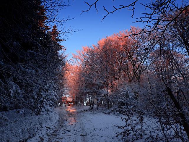 Zimowe podejście na Luboń Wielki