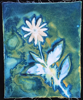 Wet Cyanotype_Sue Reno_Image 69