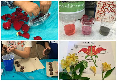 Flower STEM activities,