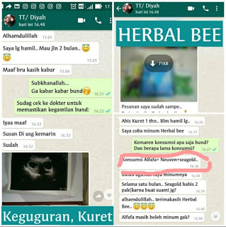 Jual Herbal Bee di Bondowoso