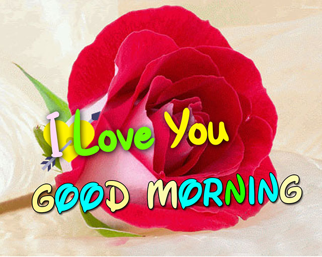 i love you good morning image download free