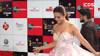 Surveen Chawla at Zee Cine Awards 2017 ~  Exclusive Galleries 010.jpeg