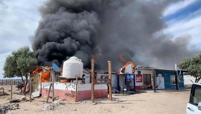 Guerra entre Chapitos y Caro Quintero desplaza a familias de Caborca