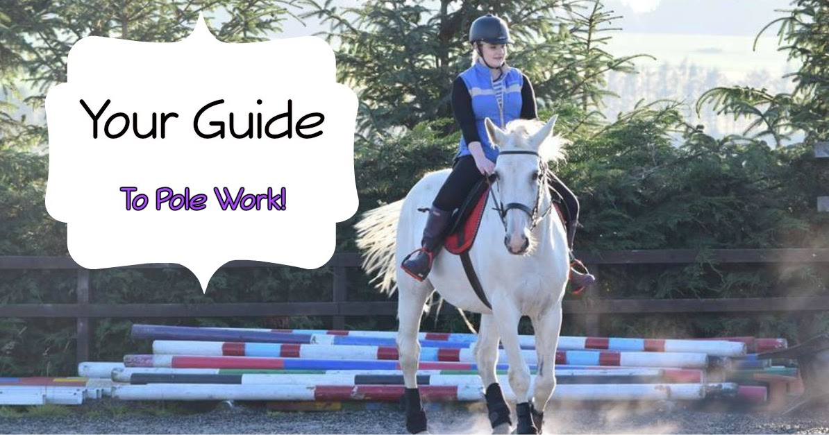 Pole Work For Your Horse - My Favourites!