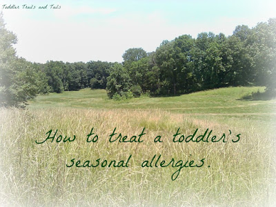 How To Treat A Toddler's Seasonal Allergies