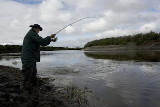 Tips mancing di sungai cepat dapat ikan banyak