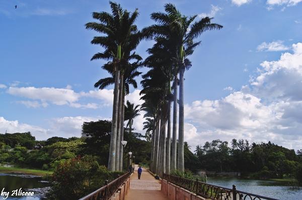 Obiectiv-turistic-Bangalore-Gradina-Botanica