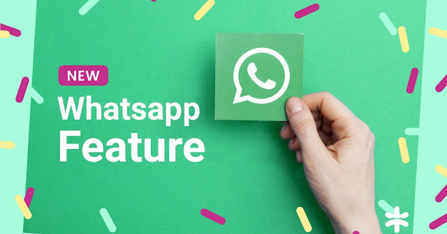 Five features offered by WhatsApp that will make it more interesting