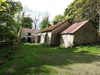 derelict cottage surrounded by trees Leitrim