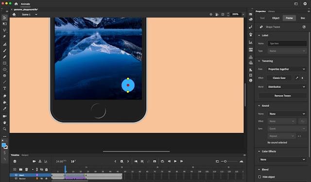 Download Adobe Animate CC 2020 Full Version Terbaru 2021 Free Download