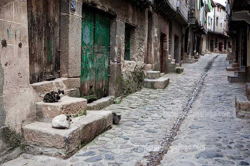 Calle Guardia Civil. Calle de aspecto tradicional en San Martín de Trevejo. Sierra de Gata. Extremadura. España.