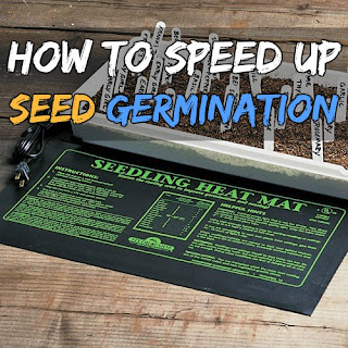 How to speed up the germination of seeds Using a Seedling Heat Mat