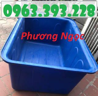 Thùng nhựa chữ nhật nuôi cá, thùng nhựa công nghiệp, thùng dung tích lớn 71402336_451037995510882_8646537442007973888_n