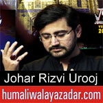 https://humaliwalaazadar.blogspot.com/2019/08/johar-rizvi-urooj-nohay-2020.html