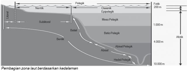 Pembagian zona laut