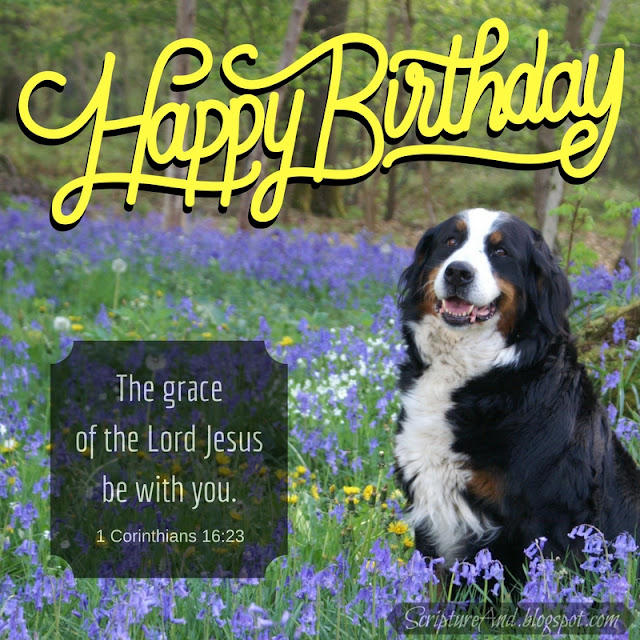 Happy Birthday with 1 Corinthians 16:23 and a dog | scriptureand.blogspot.com