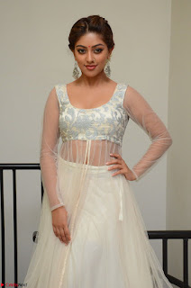 Anu Emmanuel in a Transparent White Choli Cream Ghagra Stunning Pics 018.JPG