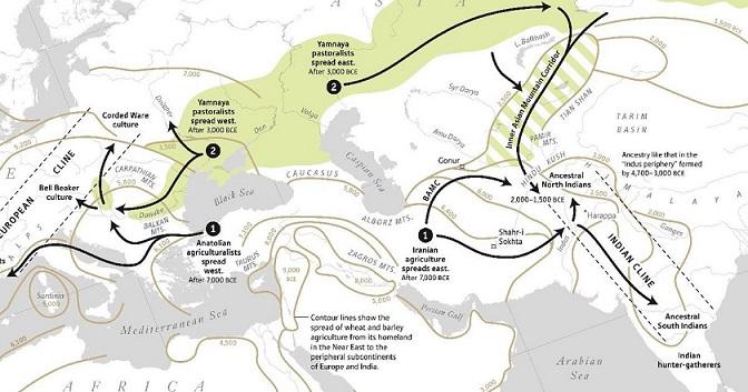 Histoire du peuplement de l'Inde: ce qu'implique des découvertes au niveau du génome